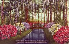SUNKEN GARDENS, GREENFIELD LAKE AND PARK. WILMINGTON, NC 1950