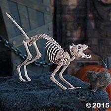 SPOOKY CAT SKELETON BONES Props Halloween NEW Haunted House Decor