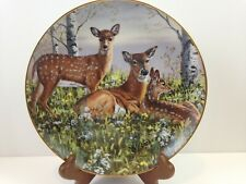 Friends of the Forest Spring Twins Deer Plate Bruce Miller Buck Danbury g3b
