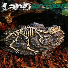 Aquarium Decoration Skull fossils for fish Tank Resin Ornaments fossils theme