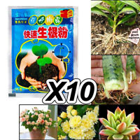 10 Bag Rapid Rooting Powder Agent for Fruit Tree Cutting Flower Plants Growth US