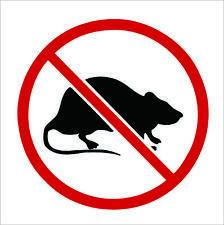 No Rats Union Decal PACK Labor Vinyl Hard Hat Helmet Sticker Car Window Decor
