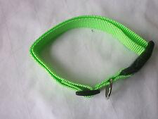 Hundehalsband, Neon Grün, Größe M