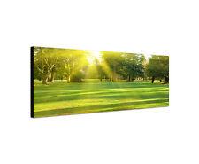 120x40cm Wandbild Leinwand Panorama grüner Rasen mit Bäumen im Park Sonne Sinus