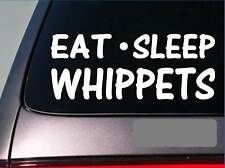 "Eat Sleep Whippets Sticker *H36* 8"" vinyl greyhound rescue muzzle dog racing"