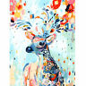 Frameless Oil Painting Kit Rainbow Deer Paint By Numbers , Adult Child Beginners