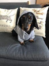 Dachshund hoodie