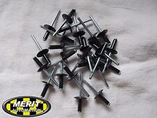 Arctic Cat SABERCAT FIRECAT F8 F5 F6 Z1 Turbo Snowmobile Black RIVETS 50pcs 3/16