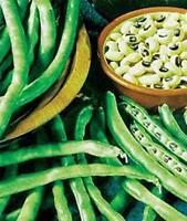PEA SEED, CALIFORNIA BLACK EYE PEAS, HEIRLOOM, ORGANIC, NON GMO, 100 SEEDS, PEAS