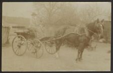 Country Lady & Her Dog Ready to Move Off On Horse & Cart. Vintage RP Postcard