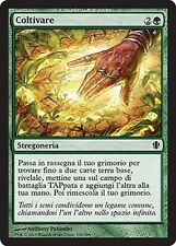 Coltivare - Cultivate MTG MAGIC C13 Commander 2013 Ita