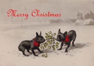 FRENCH BULLDOG TWO DOGS WITH MISTLETOE SINGLE DOG PRINT GREETING CHRISTMAS CARD