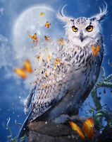 Diamond Painting Animal Full Drill 5D DIY Embroidery owl Mosaic Cross Stitch Kit