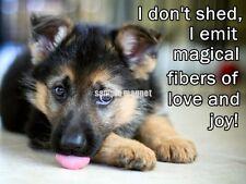 "German Shepherd Refrigerator Magnet  4"" x 3""  I Don't Shed"