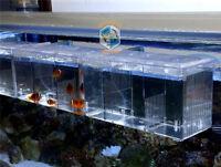 Acrylic Suspended Aquarium Guppy Baby Small Fish Separator Fishes Breeding Box