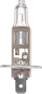 Headlight  Philips  H1C1