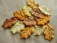 50 paper LEAVES 43mm Autumn Mix MPL34B Craft Scrapbook Card Art Embellishment