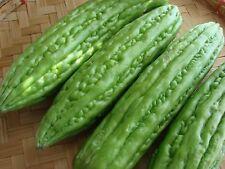 Liveseeds - Bitter Melon ,Bitter Gourd seeds, Balsam Pear 15 seeds