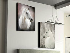 BEAUTIFUL HORSES MODERN ABSTRACT CANVAS PRINTS LARGE 60x80 SET OF 2 WALL ART