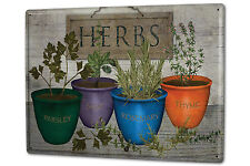 Tin Sign XXL Flora Floral Parsley sage rosemary thyme potted herbs