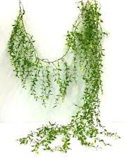 China Root Ivy Greenery Garland~Two Tone Green~PVC/Artificial~6 ft. Long
