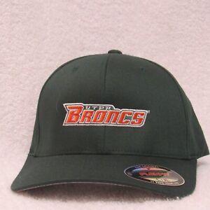 UTPA Broncs Hat