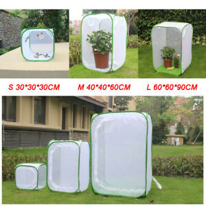 AU Stick Insect Cage Praying Mantis Butterfly Chameleon Pop-up Housing Enclosure