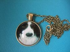 Border Collie Dog Face Necklace & Pendant Glass Metal Chain Bronze Tone Puppy