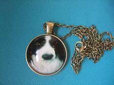 Border Collie Dog Face Necklace & Pendant Glass Metal Chain Bronze Tone Puppy