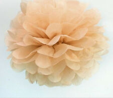 "1/10x Tissue Paper Pompom Flower Ball Home Wedding Party Decor Supply 8""/10""/14"""