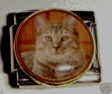 Tabby cat on brown round photo 9mm stainless steel italian charm bracelet link
