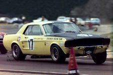 Ford Shelby GT 350 Mustang & Titus -winners Sebring 4h 1967 - Trans-Am -2 racing