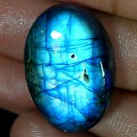 40.70Cts Natural Multi Fire Spectrolite Labradorite Oval Cabochon Loose Gemstone