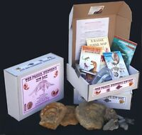 Fossil Hunters Kit Box: Guide,Chart,Hammer,Goggles