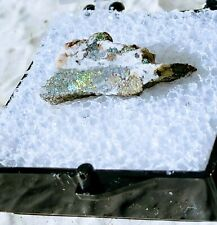 High Grade Gold Ore Brecciated White Quartz/Gold/Electrum Specimen