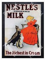 Historic Nestlé's Condensed Milk Advertising Postcard