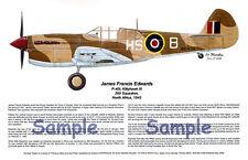 P-40 Tomahawk, signed by RAF Ace!, Aviation Artist, Ernie Boyette