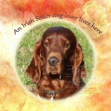 More details for irish setter dog lover lives here new hardboard plaque tile sandra coen art