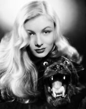 AWESOME VERONICA LAKE HOLLYWOOD BEAUTY CLASSIC 8 X 10 PHOTO 2