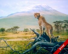 WILD CHEETAH CAT AT MT KILIMANJARO AFRICA ANIMAL PAINTING ART REAL CANVAS PRINT