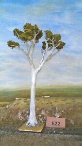 Model Trees Australian Gums Layout ready NSWGR QGR  train rail HO OO N  lot E22