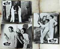 3 Original Aushangfotos Starr vor Angst Jerry Lewis Dean Martin s/w