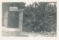WWII 1944 USAAF 26th Bomb SQ Cpl Boricheski's South Pacific Photo sign bad well