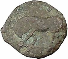 GELA In SICILY 420BC Bull & Gelas Authentic Ancient Greek Coin i46021