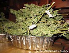 Pan of Marijuana Buds - THIS IS A PHOTO PRINT NOT ACTUAL MARIJUANA