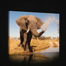 CANVAS WANDBILD LEINWANDBILD WASSER AFRIKA NATUR TIEREN TIER ELEFANT 3FX2602O1