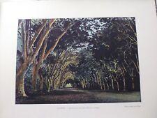 Tahiti/Moréa:Gravure 19°in folio couleur/ Avenue de la Fautaua :District de paré