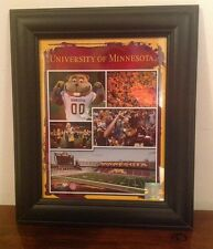 University of Minnesota Gopher Football Framed Picture Collage TCF Bank Stadium