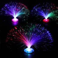 Multicolor Fiber Optic Lamp Light Holiday Wedding LED Centerpiece Fiberoptic