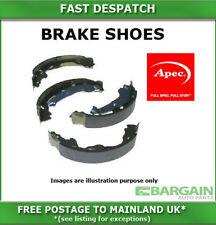 Apec Rear Brake Shoes